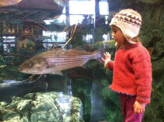 Annika@Aquarium Walthan