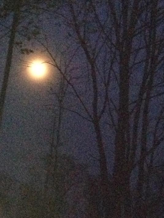 Moon over deck 4-13