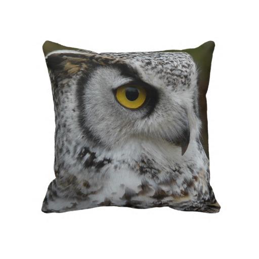 owl_eye_close_up_photo_throw_pillows-r93cc4b2673d94f439968539d4106edf0_2zbjl_8byvr_512