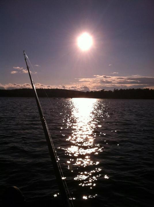 The Rod  The Moon The Deep
