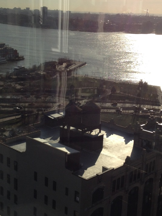 Through the glass: 21st floor  W25th St NYC