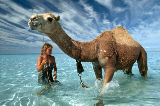 After walking almost 1700 miles across the heart of the Australian outback, Davidson and her camels arrived at the Indian Ocean. Never having seen a body of water larger than a puddle before, her camels were mesmerized. (Photo by Rick Smolan/Against All Odds Productions)
