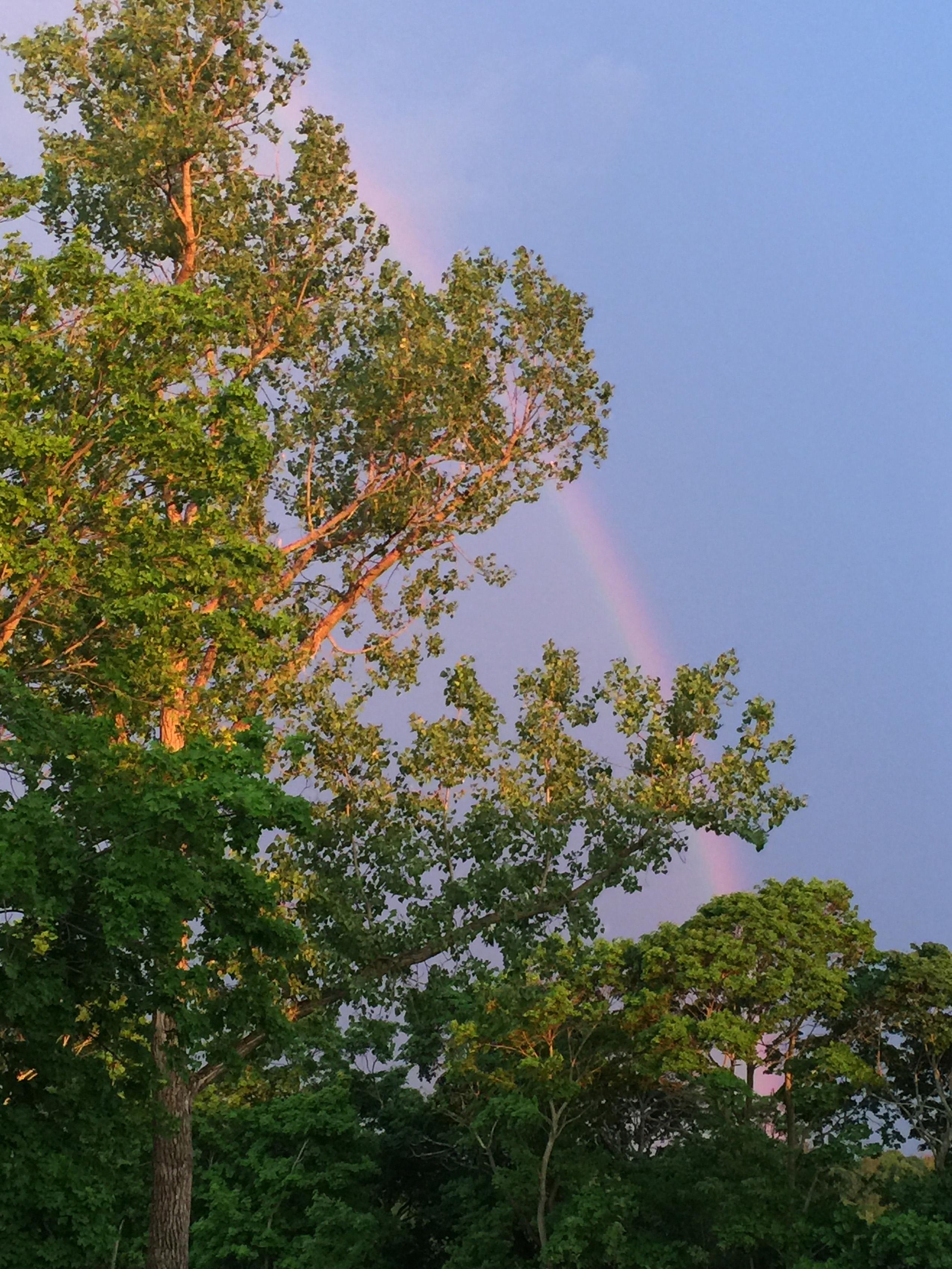 rainbowOffDeck6-2016