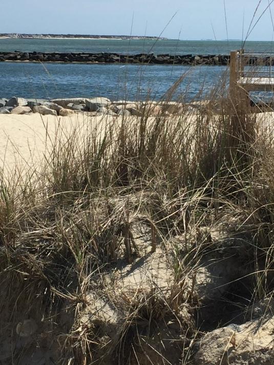 Cape Cod Smuggler's Beach