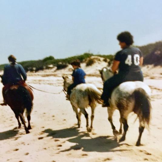 Horses in 1979.jpg