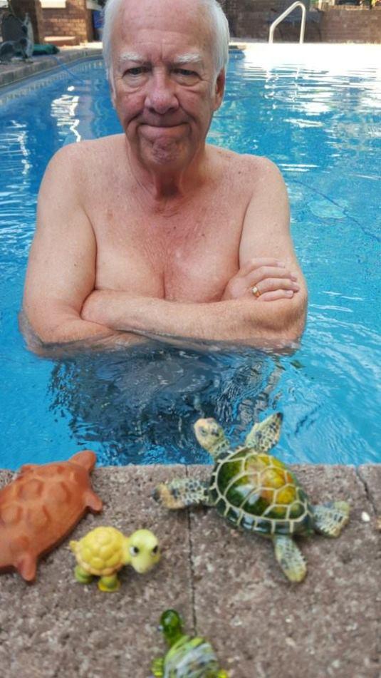 David&Turtles