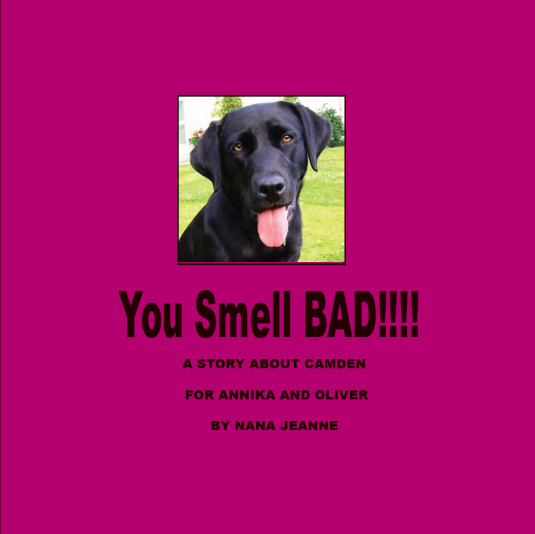 YouSmellBadCover